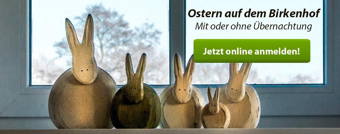 Osterferien auf dem Reiterhof