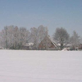 Birkenhof im Schnee