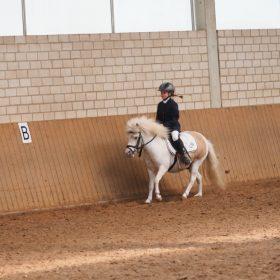 Reiterwettbewerb Clara auf Mozart