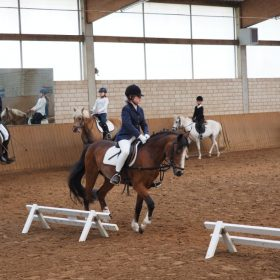Abteilung Reiterwettbewerb