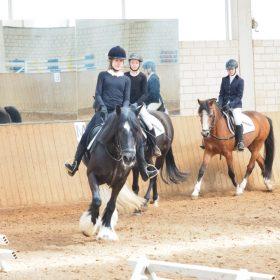 Abteilung im Reiterwettbewerb