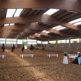 Platzierung Reiterwettbewerb